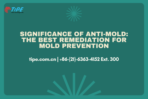 Significance of Anti-Mold: The Best Remediation for Mold Prevention